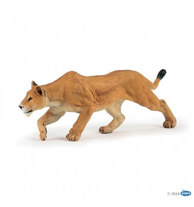 Lioness chasing