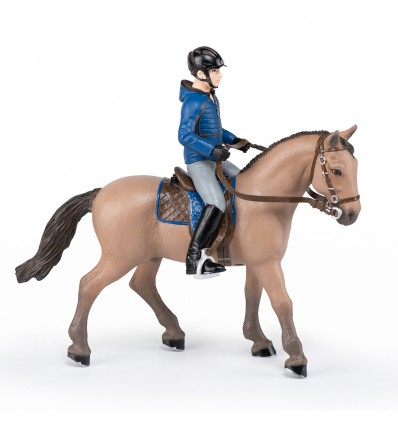 Walking horse and their male rider