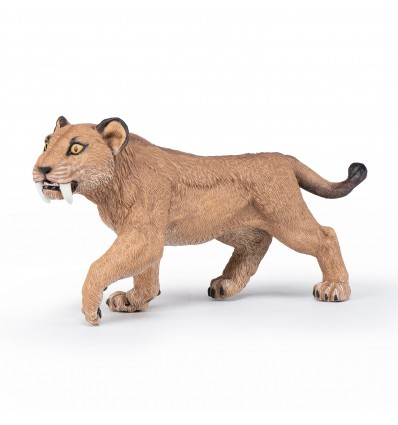 Young smilodon