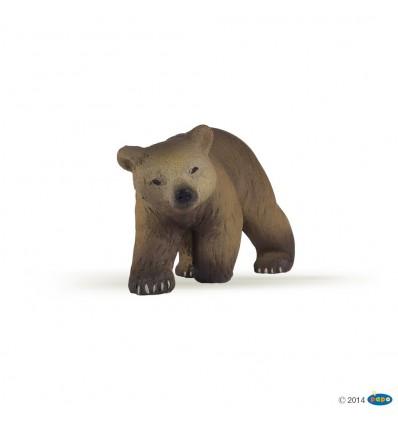 Pyrenees bear cub