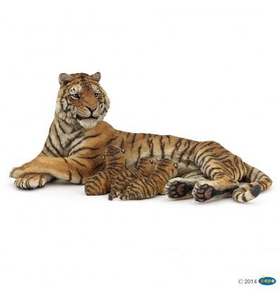 Tigresse couchée allaitant