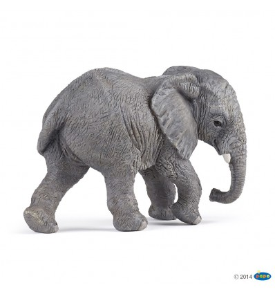 Jeune éléphant d'Afrique
