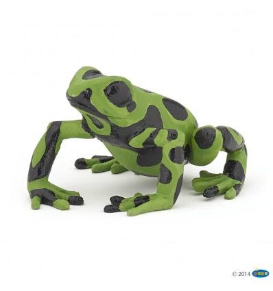 Equatorial green frog