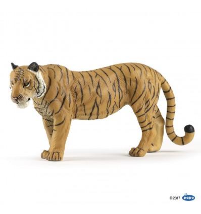 Large tigress