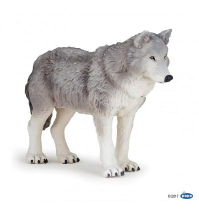 Grand loup