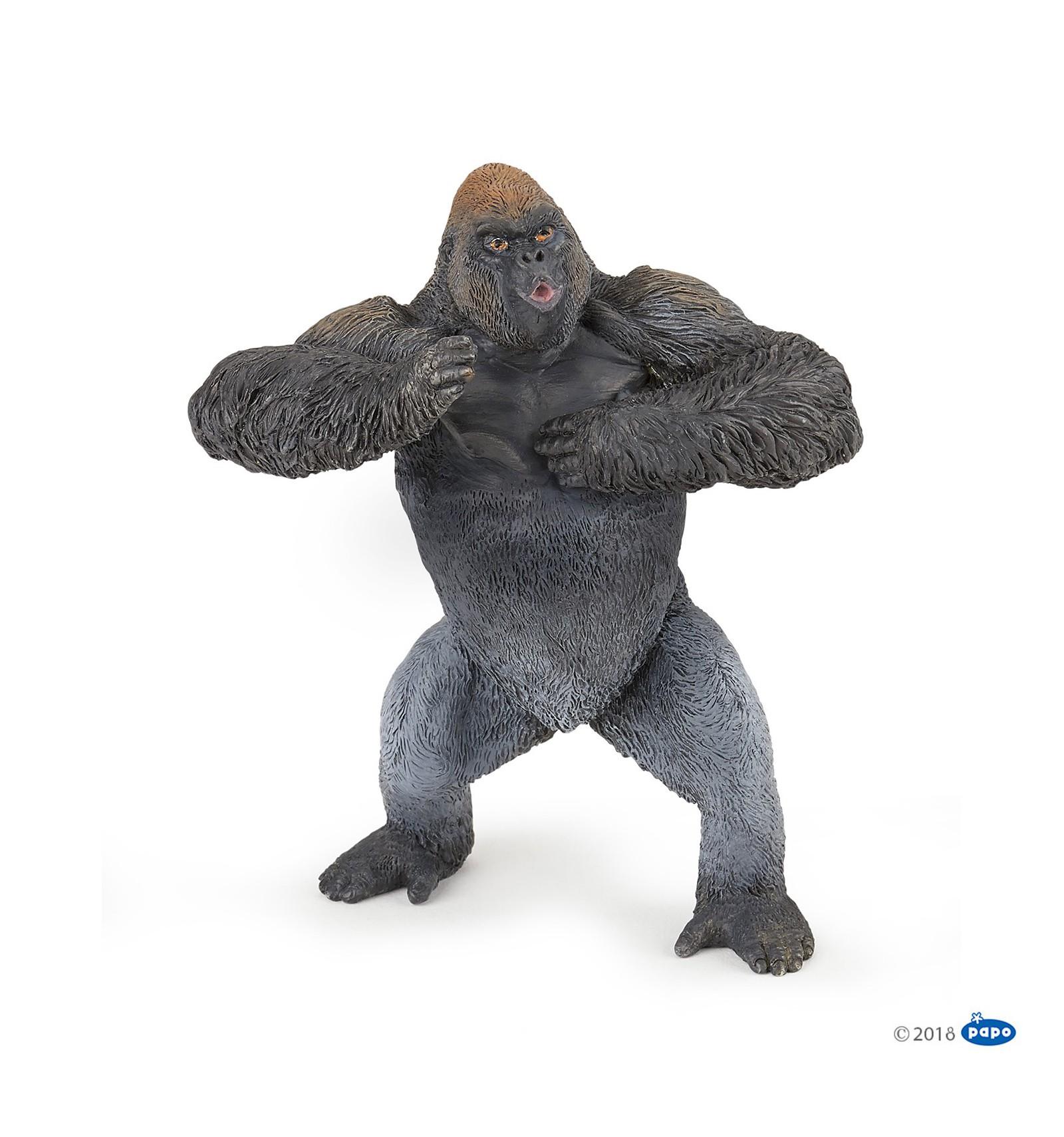 Gorilla Papo