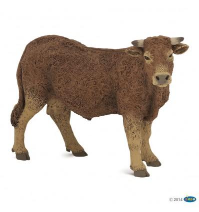Limousine cow