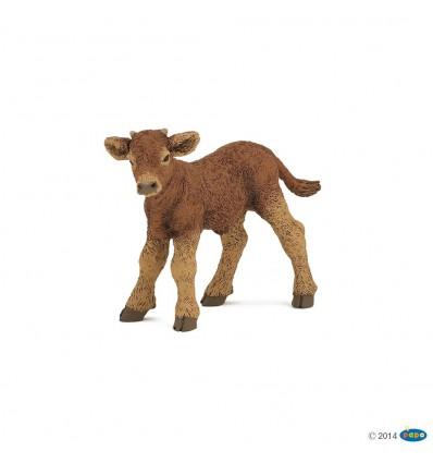 Limousin Kalb