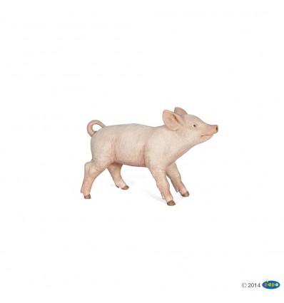Female piglet