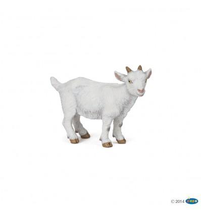 Chevreau blanc