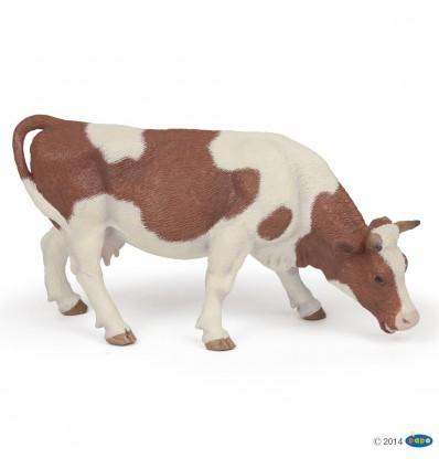 Grasende Simmentaler Kuh