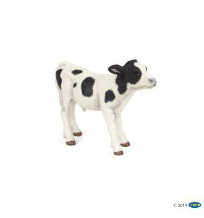 Black and white calf