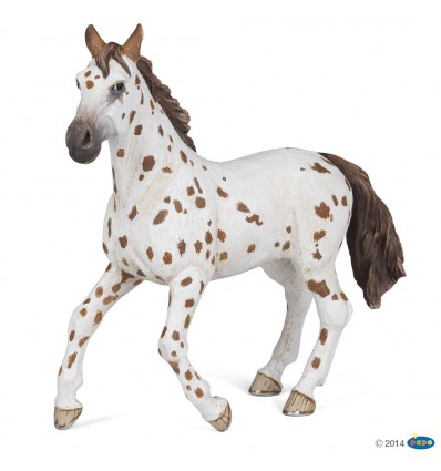 Jument appaloosa brune