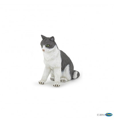 Chatte assise