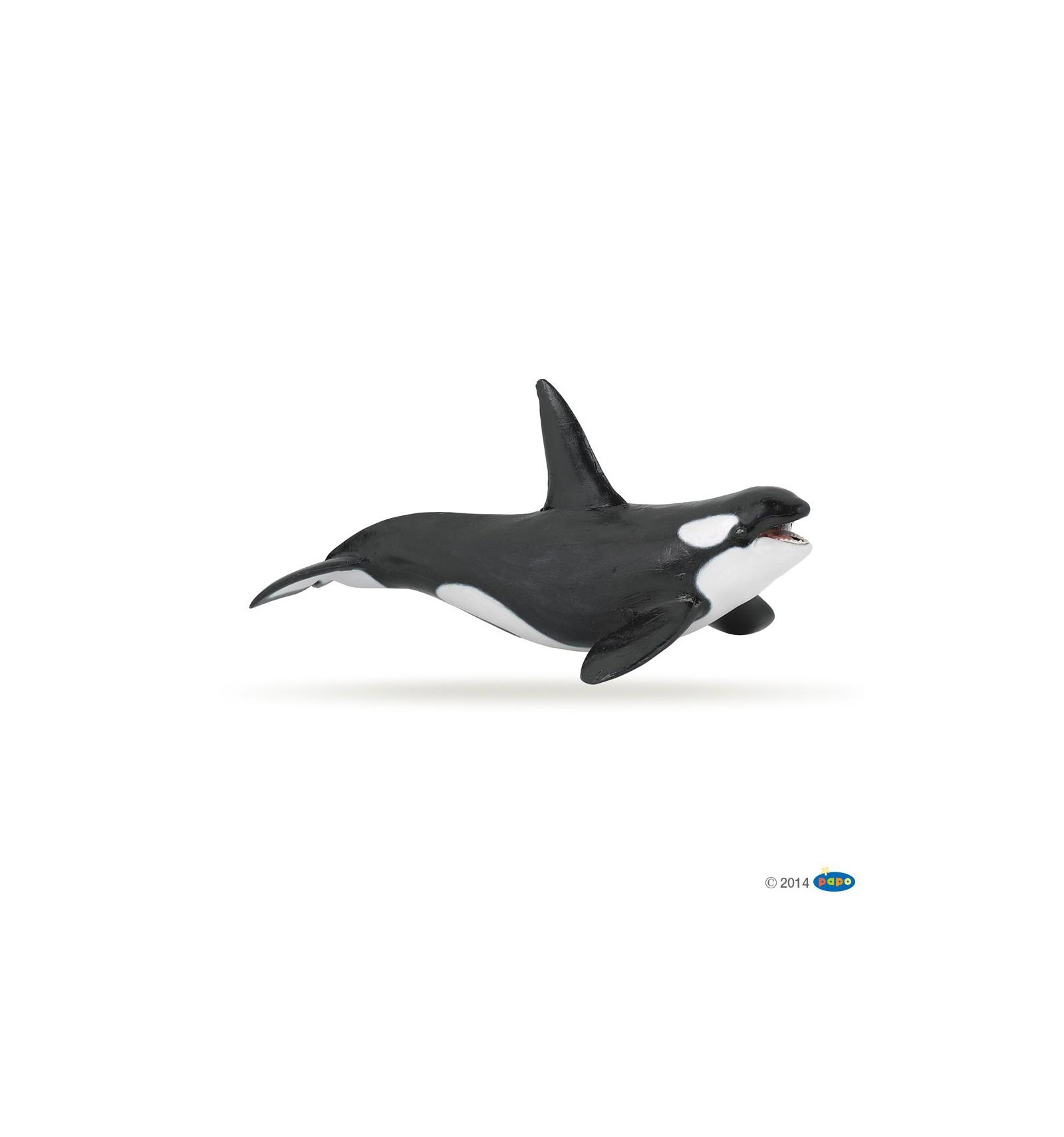 Image D Orque orque - papo