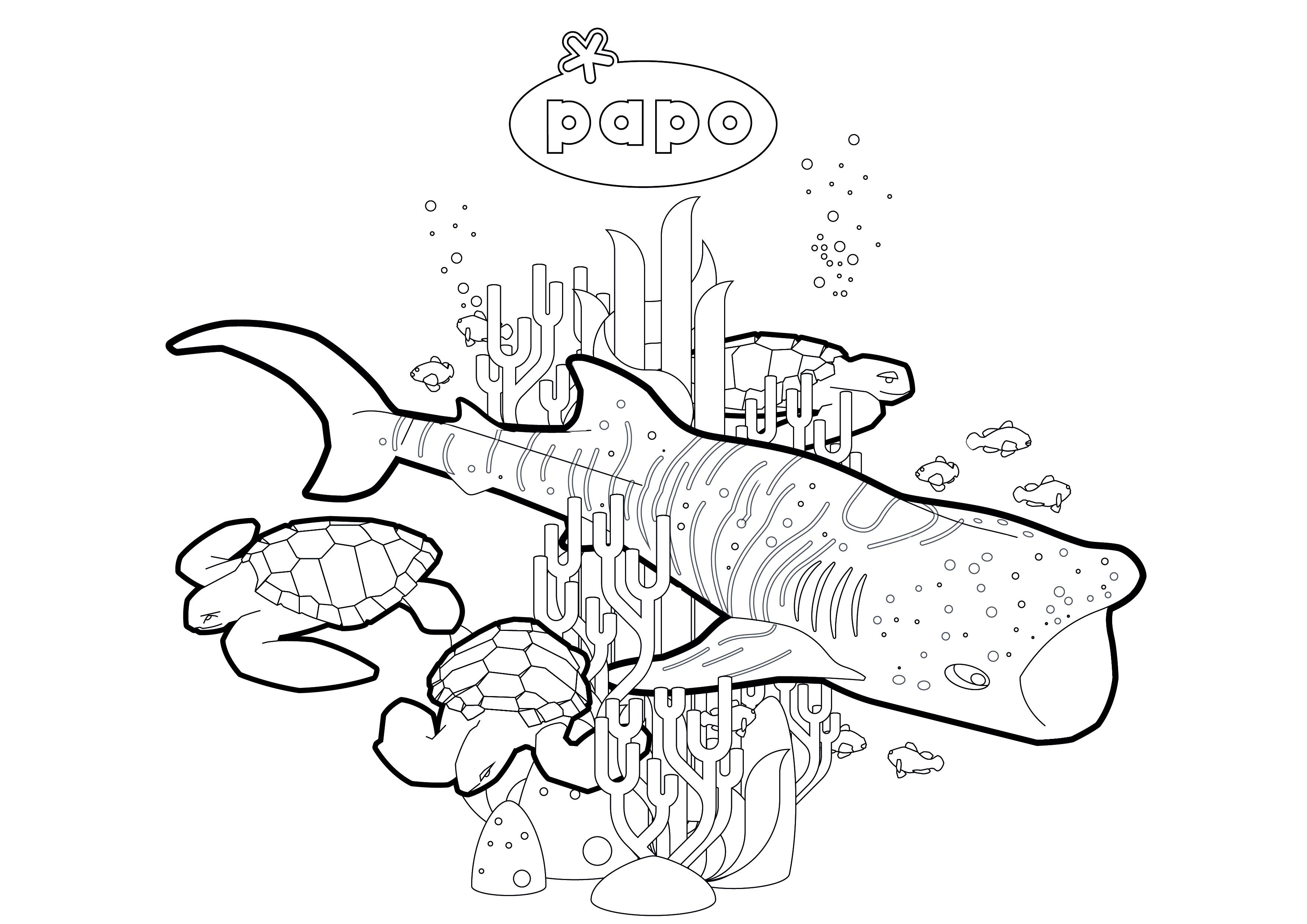 PAPO_2019-SEA-coloriage-01.jpg